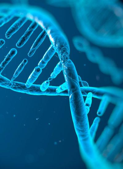 Gen-Bio_Genetique